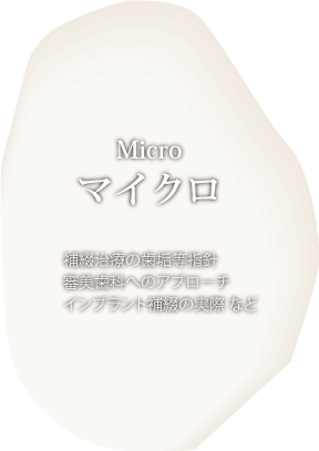 マイクロコース